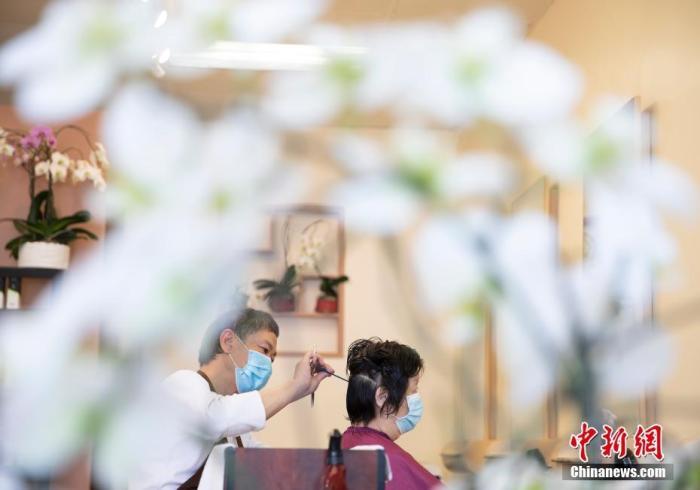 当地时间9月15日,顾客在美国旧金山一家理发店内理发。从14日开始,旧金山的理发店、美甲店、健身房以及酒店等商业店铺获准重启室内营业。 中新社记者 刘关关 摄