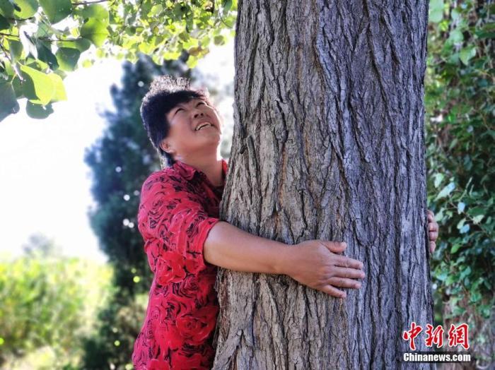 图为殷玉珍在沙地里亲手种植的树木。党田野 摄