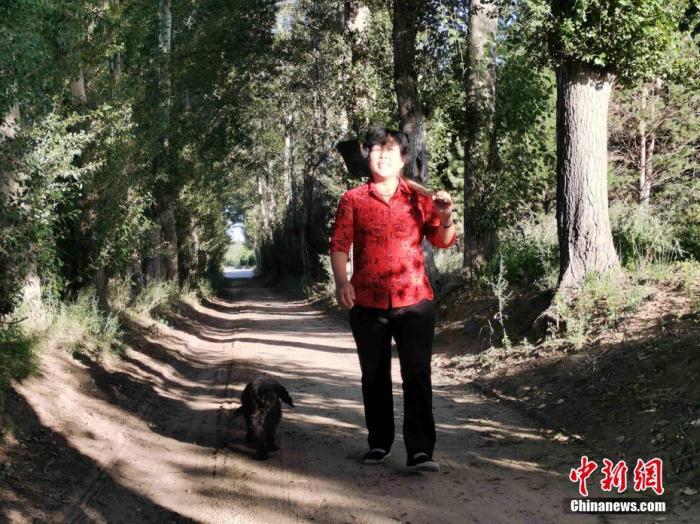 """毛乌素沙地是中国四大沙地之一,横跨内蒙古自治区鄂尔多斯市南部、陕西省榆林市北部等地,面积达4.22万平方公里,曾是一片不毛之地。经过多年治理,如今的毛乌素沙地植被大幅增加,生态环境整体改善。实现从""""沙进人退""""到""""人沙和谐""""的转变。今年53岁的全国劳动模范殷玉珍与风沙抗争了大半辈子。她曾卖掉家里全部财产,换回600多棵树苗种在沙地里,只为拦住不断侵袭家园的黄沙。30多年过去,殷玉珍在毛乌素沙地里种植了杨柳树、松柏树等几百万株植物,将6万多亩荒沙变成了生命绿洲。党田野 摄"""