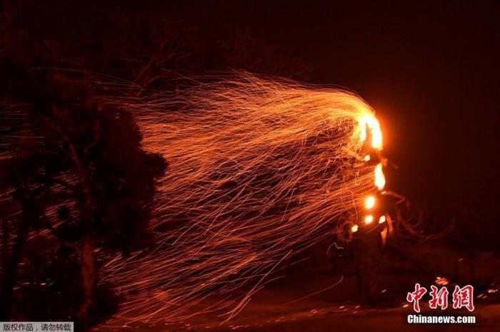 美西南部大火因风势扩大 洛杉矶著名自然中心被摧毁图片