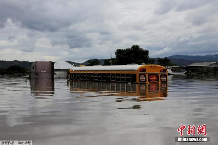 """當地時間11月5日,洪都拉斯pimienta,颶風""""埃塔""""侵襲過后,當地一輛大巴車被洪水淹沒。颶風""""埃塔""""3日起橫掃中美洲多國沿海地區,強風和暴雨造成樹木折斷、電力中斷、交通嚴重受阻,并引發泥石流等災害。"""