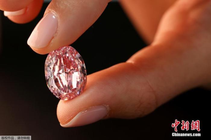 """当地时间11月6日,在瑞士日内瓦苏富比拍卖会上,一位模特展示紫粉色钻石""""玫瑰之魂""""。这颗钻石重达14.83克拉,将于11月11日进行拍卖。"""