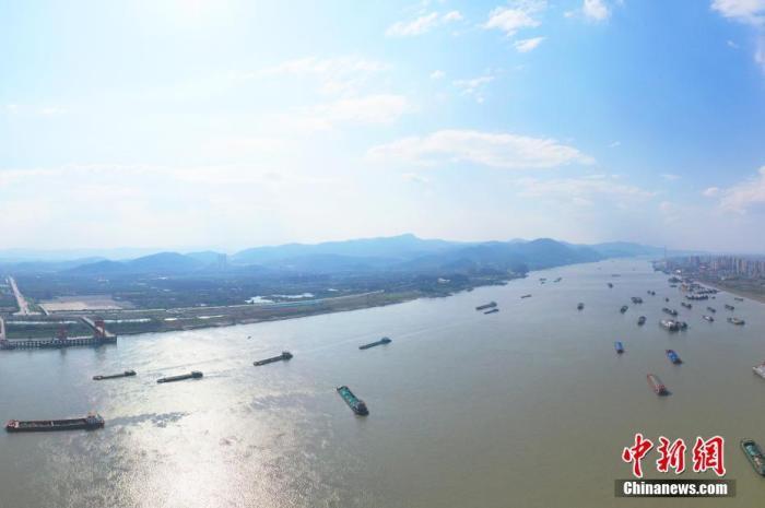 航拍下的长江江西瑞昌段,长江航道船舶来往不断。 魏东升 摄