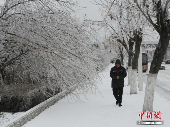 """11月19日,吉林省长春市遭遇罕见冻雨天气,整座城市披上""""冰装""""。 记者 刘栋 摄"""
