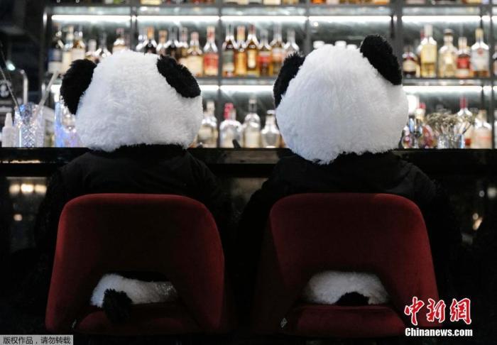 """当地时间11月24日,德国法兰克福餐厅内摆放的大熊猫玩偶。图为正在""""就餐""""的玩偶。"""