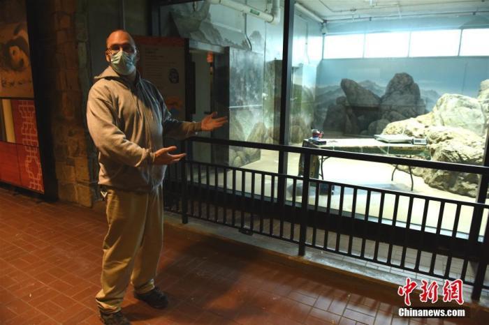 """8月21日,大熊猫""""美香""""在美国华盛顿国家动物园诞下一只雄性幼崽。园方日前为其取名""""小奇迹"""",11月29日它即将迎来出生第100天。图为11月22日华盛顿国家动物园熊猫饲养员马蒂・迪里介绍为""""小奇迹""""进行体检的操作台。 中新社记者 陈孟统 摄"""