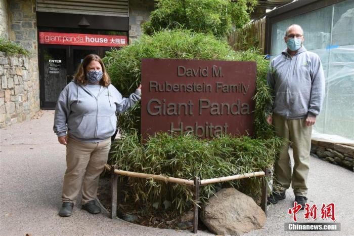 图为华盛顿国家动物园熊猫饲养员马蒂・迪里(右)和妮可・迈考克。 中新社记者 陈孟统 摄