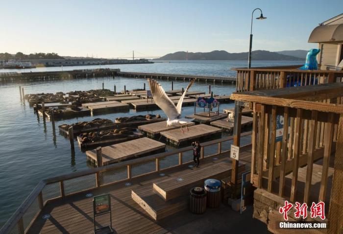"""当地时间12月7日,美国加州旧金山渔人码头冷冷清清。旧金山湾区的旧金山、圣克拉拉、马林、康特拉科斯塔和阿拉米达5个县4日颁布了今年3月以来最严厉的""""居家令"""",以缓解病例的激增,防止医院不堪重负。"""
