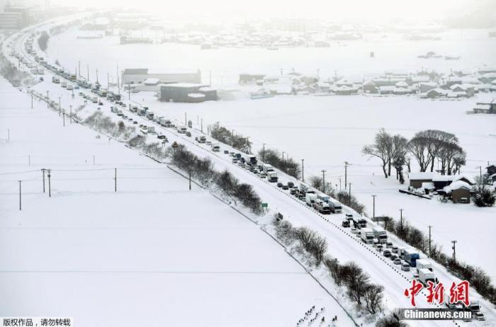 当地时间1月11日据日本放送协会(NHK)报道,近日,日本多地遭遇大雪天气,当地民众受到严重影响。截至当地时间10日晚10时,该国已有8人因雪灾身亡,另有277人受伤。据报道,此次降雪过程从7日开始,对日本新��县、福井县和富山县等地造成严重影响。其中,新��县受影响最为严重,当地已有3人不幸遇难,另有112人受伤;福井县为3人死亡、53人受伤;富山县1人死亡、72人受伤;石川县1人死亡、38人受伤;另外,歧阜县还有2人受伤。图为当地时间1月10日,车辆被困在日本福井县北库高速公路的雪地里。
