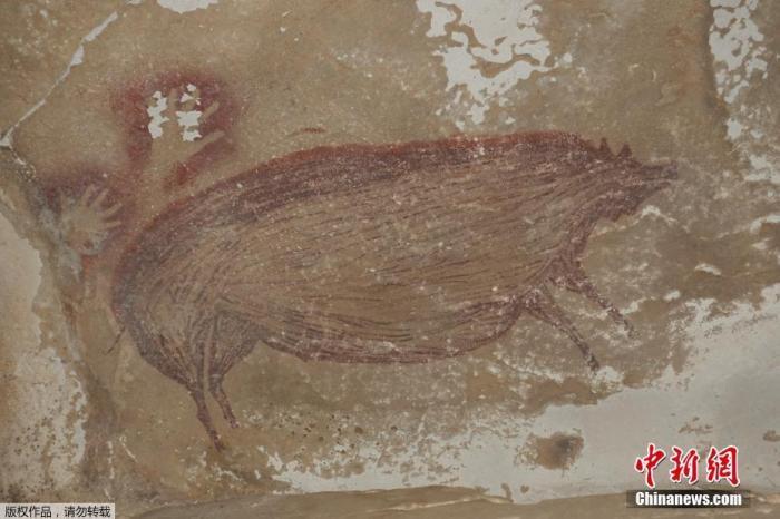 世界最古老洞穴壁画曝光 可追溯至4.5万年前(图)
