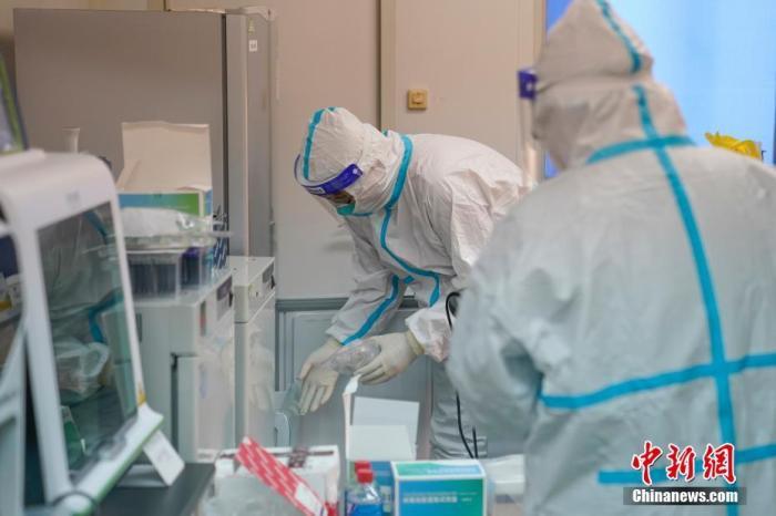 资料图:核酸检测实验室内,工作人员正在对新一批病例样本进行检测。 中新社记者 吕品 摄