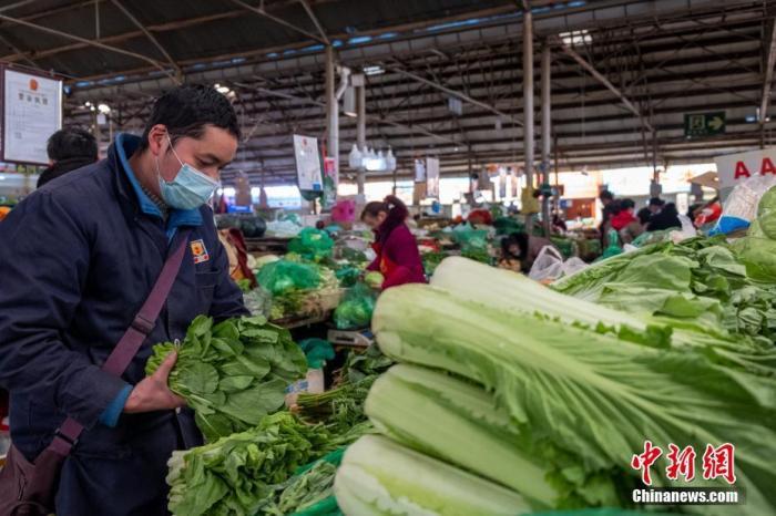 2月26日,拉萨药王山农贸市场商户王佑军码放叶类蔬菜,他销售的蔬菜中大半为西藏本地种植。 中新社记者 贡桑拉姆 摄