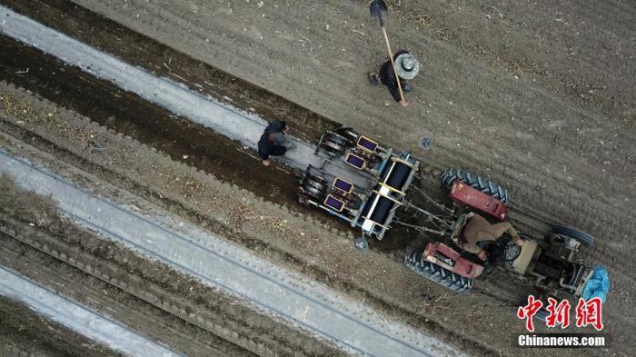 3月27日,新疆巴音郭楞蒙古自治州(以下简称巴州)轮台县野云沟乡野云沟村棉农在种植棉花。连日来,巴州棉农陆续开展准备工作,巴州是新疆棉花主产区之一,该州今年种植棉花达到330余万亩,是重要的国家优质商品棉基地。在棉花领域,从种植到收获基本实现机械化作业。确·胡热 摄