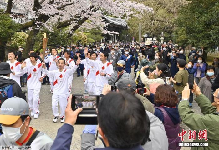 内地时间3月29日,日本栃木,2020东京奥运会火把通报第5日,火把在一片樱花树下通报,阶梯两旁樱花盛开美如画。