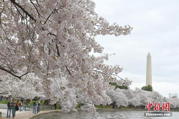 资料图:美国首都华盛顿。 <a target='_blank' href='http://www.chinanews.com/'>中新社</a>记者 陈孟统 摄