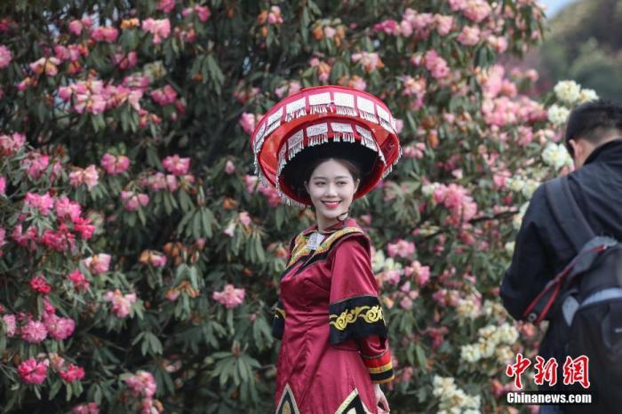 4月1日,游客穿着少数民族服装在百里杜鹃景区拍照。近日,贵州省毕节市百里杜鹃风景名胜区迎来最佳赏花期,吸引众多游客前来观赏游玩。该景区是迄今为止中国已查明的面积最大的天然杜鹃林带。瞿宏伦 摄