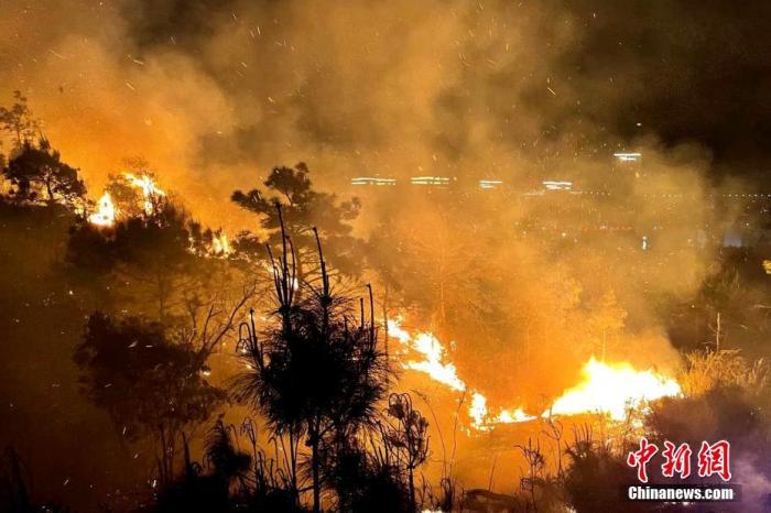 4月7日,福建省福清市海口镇南厝村发生森林火灾。卢逸致 摄