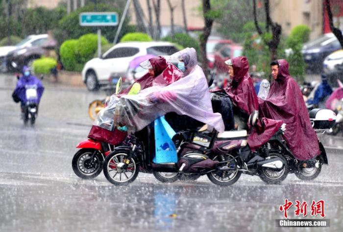 资料图:市民在雨中出行。张斌 摄
