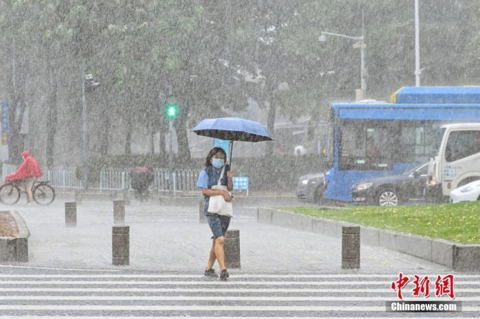 资料图:市民雨中出行。 中新社记者 陈骥旻 摄