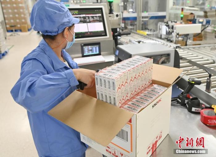"""日内瓦当地时间6月1日,世界卫生组织宣布,由中国北京科兴中维生物技术有限公司研发的新冠灭活疫苗""""克尔来福""""正式通过世卫组织紧急使用认证。图为北京时间6月1日,位于北京市大兴区的北京科兴中维生物技术有限公司内,工人在新冠灭活疫苗包装生产线上进行开箱登记扫描作业。 <a target='_blank' href='http://www.chinanews.com/'>中新社</a>记者 侯宇 摄"""