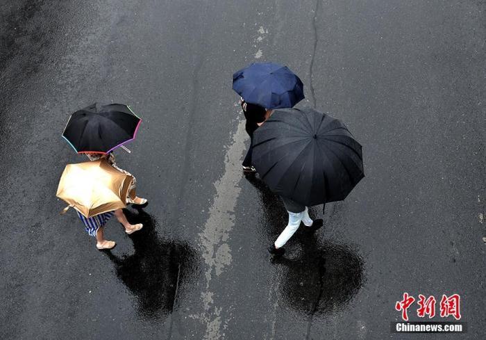 资料图:一名市民撑着超大号雨伞上班。记者 李霈韵 摄