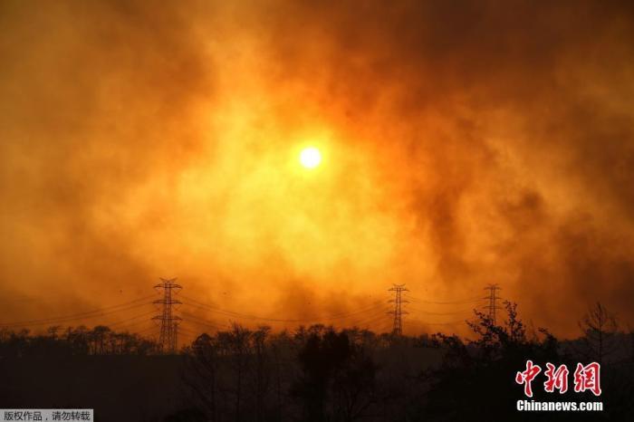 土耳其森林大火持续 已造成1人死亡10人受困