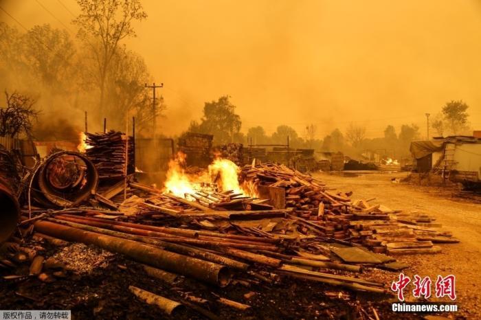 土耳其森林大火已致3人死亡 当局调查起火原因
