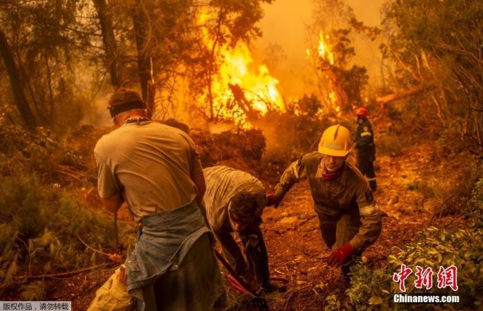 """当地时间8月9日,希腊第二大岛屿埃维亚,消防员和志愿者正在梳理水管准备扑灭前方的山火。希腊当局已宣布受影响地区进入紧急状态。希腊总理米佐塔基斯形容称,这是一个""""噩梦般的夏天""""。"""