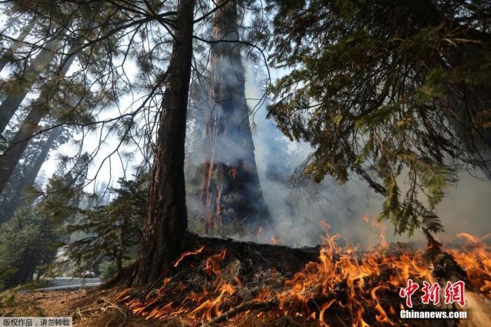 美加州山火蔓延!9000余名消防员出动 民众紧急撤离