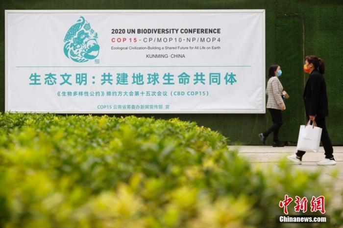 10月11日,市民从云南省昆明市街头的COP15海报前走过。当日,《生物多样性公约》缔约方大会第十五次会议(COP15)在云南省昆明市开幕。 <a target='_blank' href='http://www.chinanews.com/'>中新社</a>记者 李嘉娴 摄
