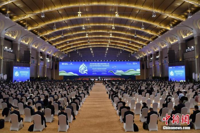 10月12日,《生物多样性公约》第十五次缔约方大会领导人峰会在云南昆明以线上线下结合方式举行。 <a target='_blank' href='http://www.chinanews.com/'>中新社</a>记者 刘冉阳 摄