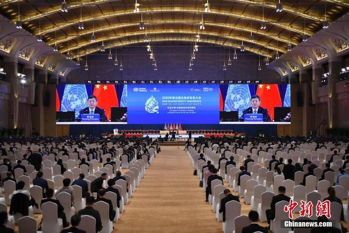 10月12日,《生物多样性公约》第十五次缔约方大会部长级全体会议在云南昆明举行。图为中国生态环境部部长黄润秋主持会议。 中新社记者 刘冉阳 摄