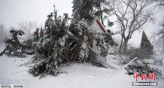 资料图:2019年3月,美国多地遭暴风雪侵袭,影响8000万居民。