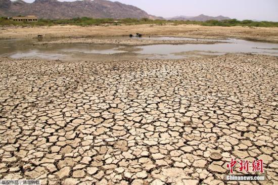 资料图:2019年6月,印度多地气温逼近50摄氏度,接连不断热浪来袭触动了供水短缺的警告。