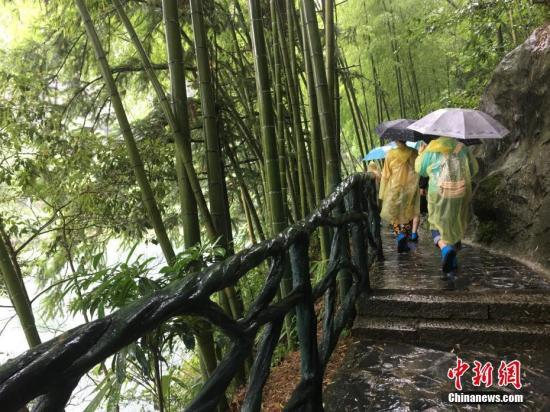 材料图:一景区内,旅客雨中爬山观美景。中新社记者 吴兰 摄中新社记者 吴兰 摄