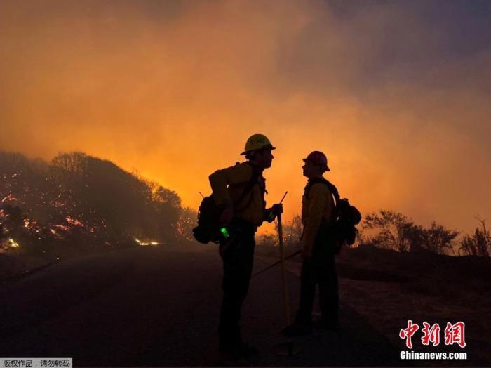 当地时间2019年11月25日,美国加州,洛斯帕德雷斯国家森林公园发生火灾,消防队员赶往现场灭火。