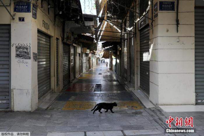 当地时间11月7日,希腊雅典,一只猫在空荡的商业街上漫步。为遏制新冠疫情,自当地时间7日早晨6时起,希腊全国进入为期三周的封锁状态。包括零售店、餐厅、咖啡馆等企业,将在封锁期间暂停营业。