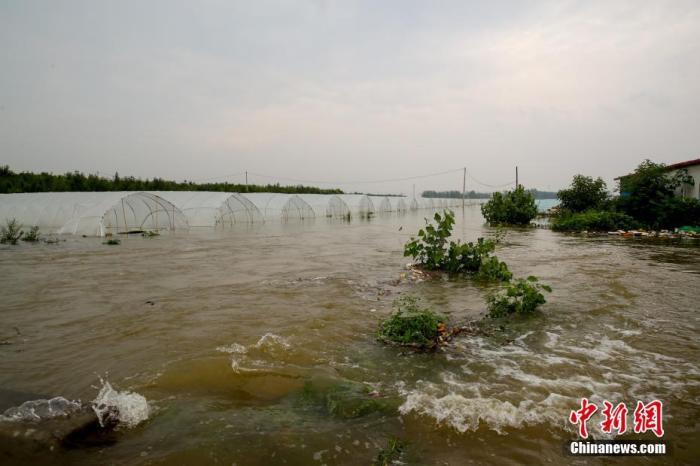 7月22日,安阳市西于曹村附近,积水已经漫过301省道,部分房屋农田被淹。19日至22日,河南安阳遭遇强降水,平均降水304.6毫米。据气象部门预测,22日16时以后安阳市有分散性阵雨,23日白天降水趋于结束。图为被淹的农田。 a target='_blank' href='https://www.chinanews.com/'/p中新社/a记者  张畅 摄
