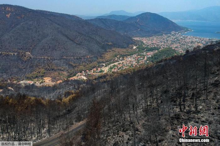 当地时间8月7日,航拍土耳其穆格拉山火现场,大片森林被烧成灰烬,画面触目惊心。